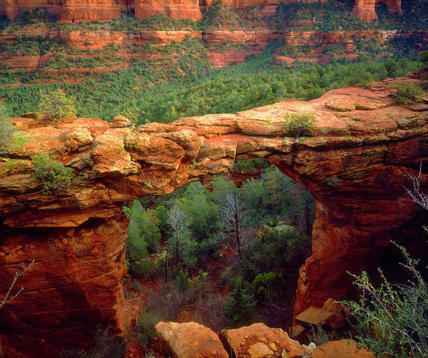 Wall Art - Photograph - Usa, Arizona, Sedona by Jaynes Gallery