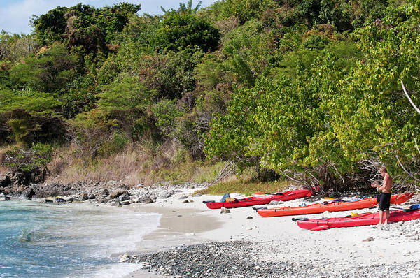 Kayaks Wall Art - Photograph - Usa, Usvi, St John by Trish Drury