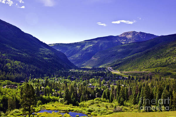 Evergreen Trees Photograph - Vail Valley View by Madeline Ellis