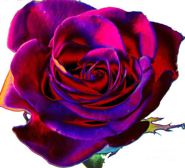 Rose Bud Digital Art - Velvet Rose by Carol Lynch