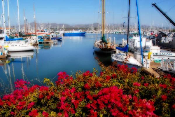 Ventura Photograph - Ventura Harbor by Lynn Bauer