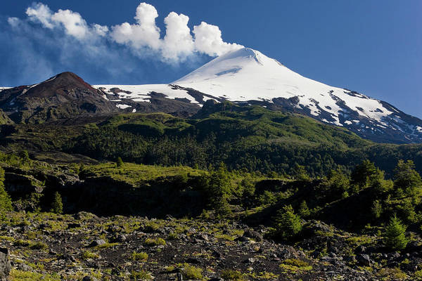 Untamed Photograph - Villarrica National Park, Chile by Scott T. Smith