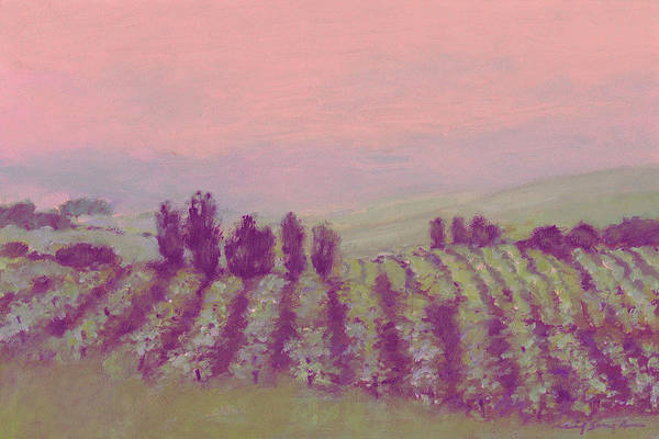 Vineyard At Dusk Art Print