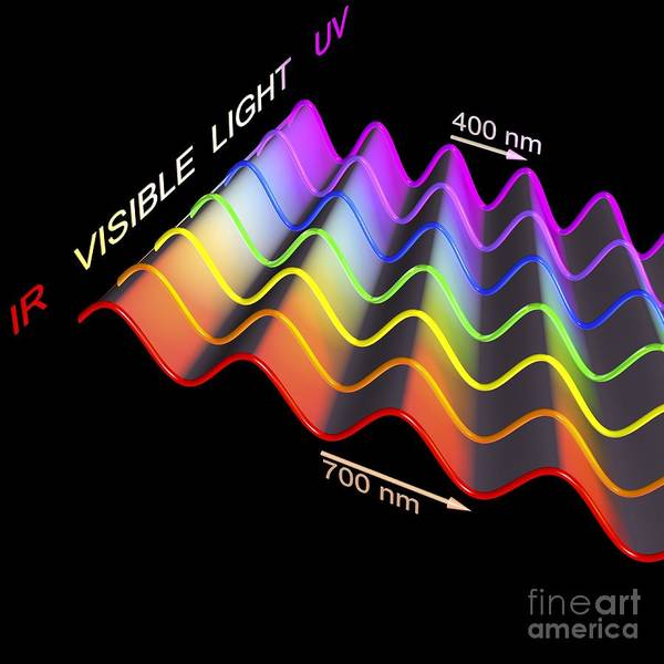 Infrared Radiation Photograph - Visible Light Spectrum, Artwork by Russell Kightley