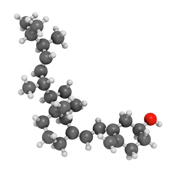 Vitamin Photograph - Vitamin D2 Molecule by Molekuul