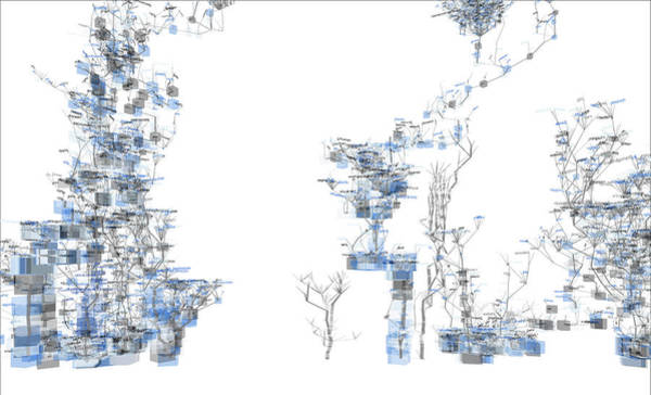 Visual Language Photograph - Website Source Code Visualisation by Christian Riekoff/science Photo Library