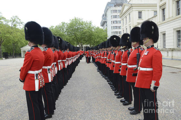 Honor Guard Photograph - Welsh Guards Stand In Formation by Andrew Chittock