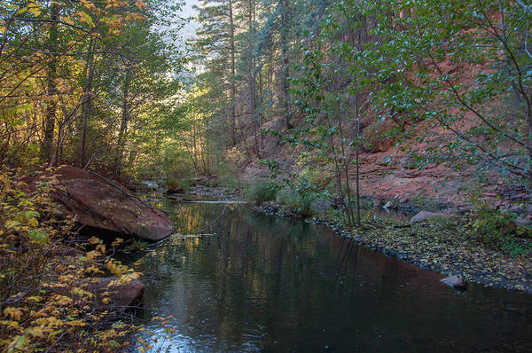 Photograph - West Fork by Tam Ryan