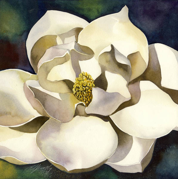 Painting - White Magnolia With Blues by Alfred Ng