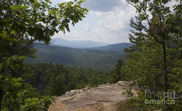 Photograph - White Mountain National Forest by Jim West