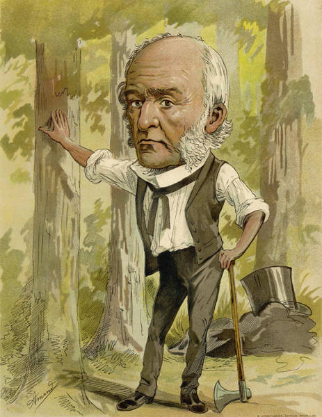 Gladstone Wall Art - Drawing - William Ewart Gladstone  English by Mary Evans Picture Library