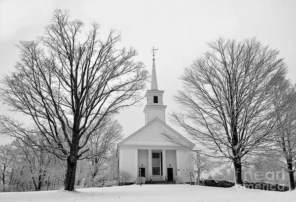 Photograph - Winter Snow Scene by Staci Bigelow
