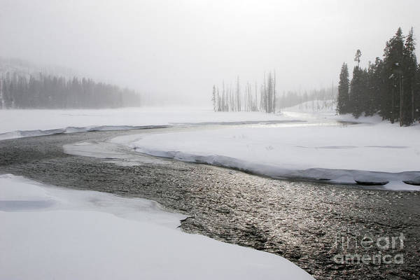 Photograph - Yellowstone National Park by Jim West