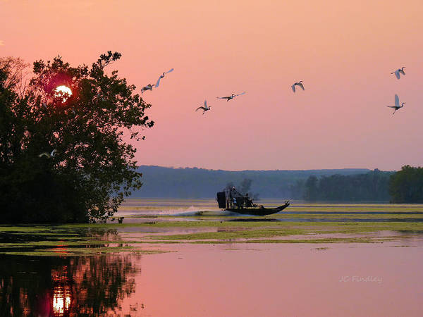 Airboat Photograph - Zoom by JC Findley