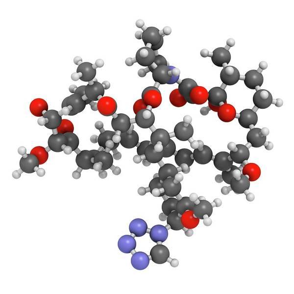 Wall Art - Photograph - Zotarolimus Immunosuppressant Molecule by Molekuul