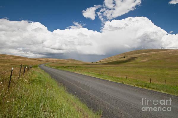 Photograph - Zumwalt Prairie In Oregon by William H Mullins