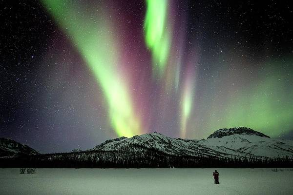 Boreal Forest Photograph - Aurora Borealis In Alaska by Chris Madeley