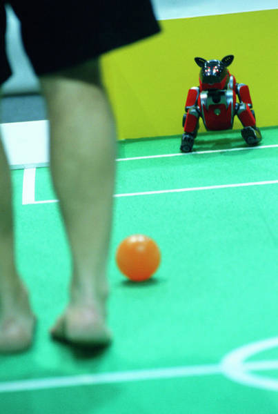 Wall Art - Photograph - 2003 Robocup Goalkeeper Being Trained by Mauro Fermariello/science Photo Library