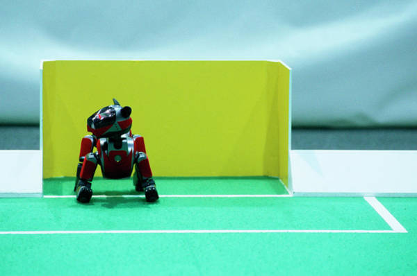 Wall Art - Photograph - 2003 Robocup Goalkeeper by Mauro Fermariello/science Photo Library