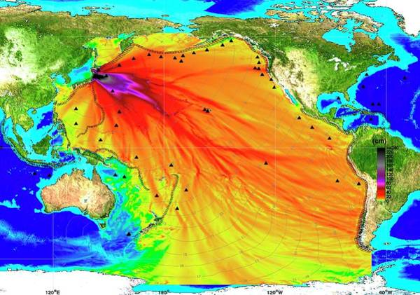Contour Map Photograph - 2011 Tsunami Height And Travel Times by Noaa/science Photo Library