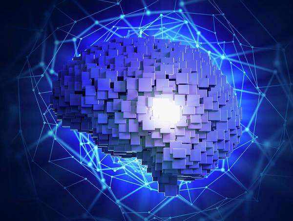 Wall Art - Photograph - Human Brain by Andrzej Wojcicki/science Photo Library