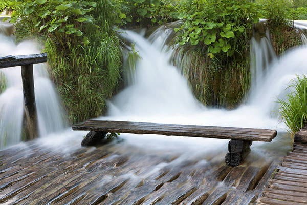 Ruminant Photograph - The Plitvice Lakes In The National Park by Martin Zwick