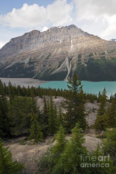 Photograph - 226p Peyto Lake by NightVisions