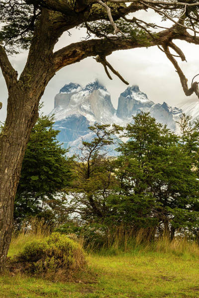 Wall Art - Photograph - Chile, Patagonia by Jaynes Gallery