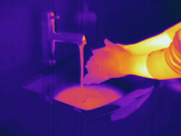 Thermal Photograph - Thermogram by Science Stock Photography/science Photo Library