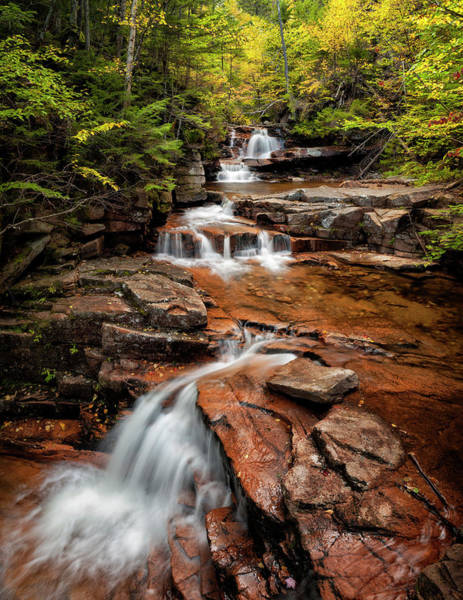 Bemis Photograph - Usa, New Hampshire, White Mountains by Ann Collins