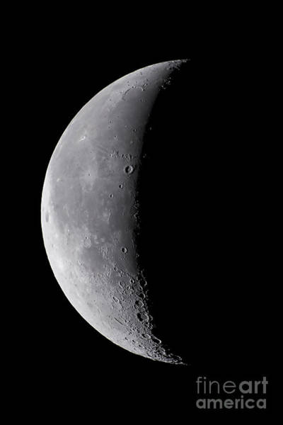 Perigee Moon Photograph - 24 Day Old Waning Moon by Alan Dyer
