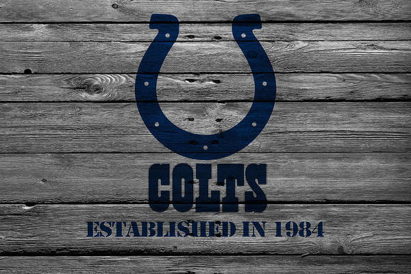 Colt Photograph - Indianapolis Colts by Joe Hamilton