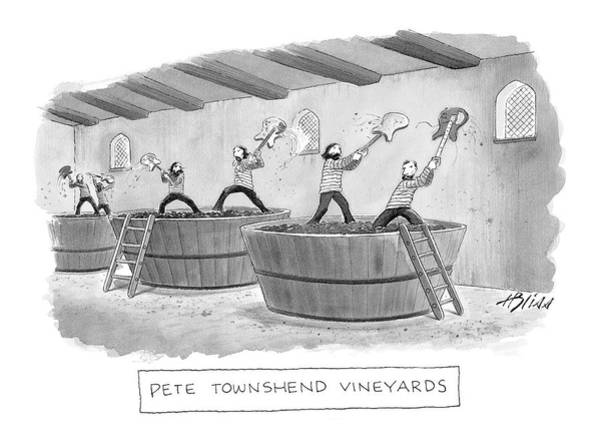 Bliss Wall Art - Drawing - Pete Townshend Vineyards by Harry Bliss