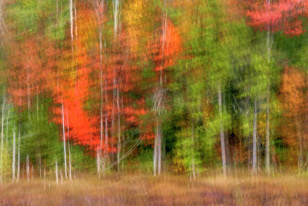 Adirondack Mountains Wall Art - Photograph - Usa, New York, Adirondack Mountains by Jaynes Gallery