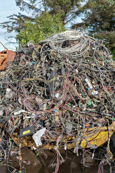 Wall Art - Photograph - Scrapyard by Lewis Houghton/science Photo Library
