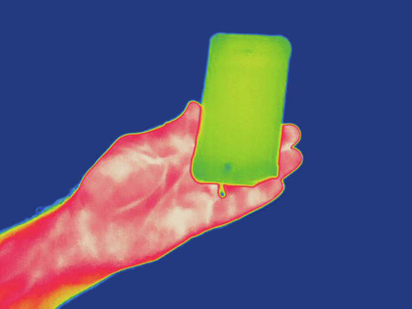 Thermal Photograph - Thermogram by Science Stock Photography