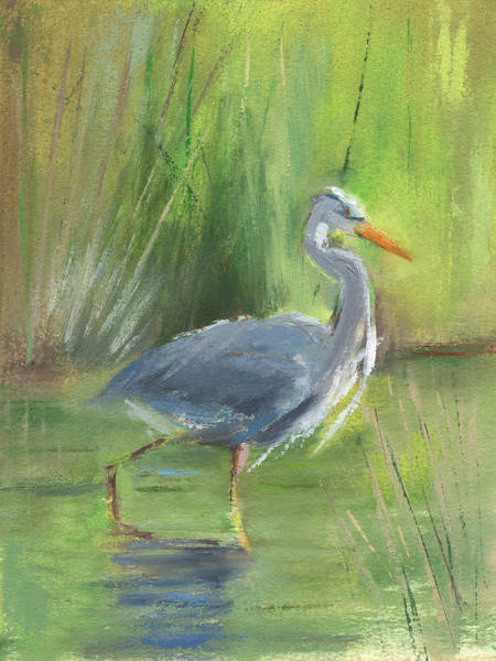 Great Blue Heron Wall Art - Painting - Rcnpaintings.com by Chris N Rohrbach
