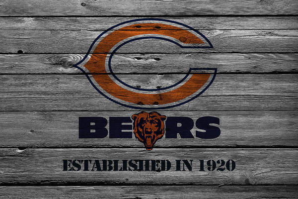 Wall Art - Photograph - Chicago Bears by Joe Hamilton