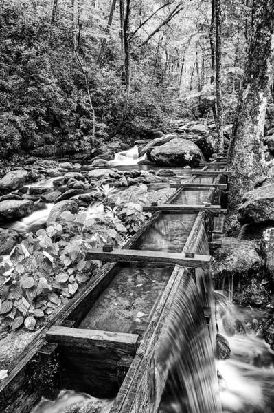 Spillway Photograph - Usa, Tennessee, Great Smoky Mountains by Jaynes Gallery