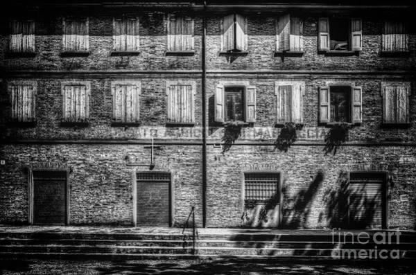 Photograph - .. by Traven Milovich