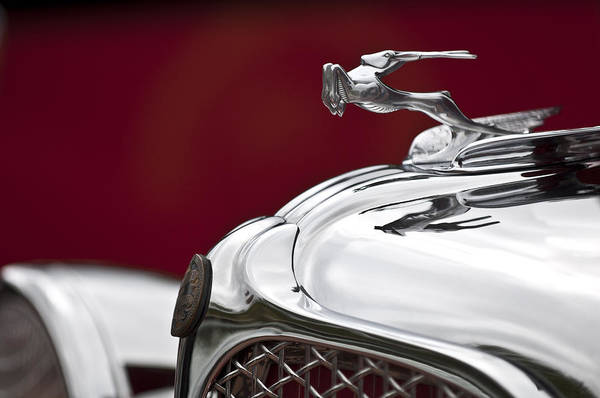 1931 Photograph - 1931 Chrysler Cg Imperial Roadster Hood Ornament by Jill Reger
