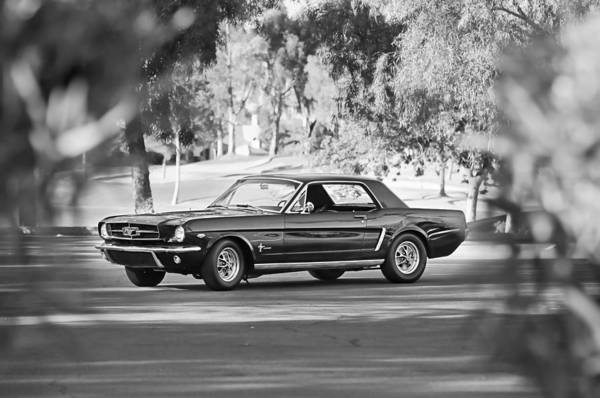 Prototype Photograph - 1965 Shelby Prototype Ford Mustang by Jill Reger