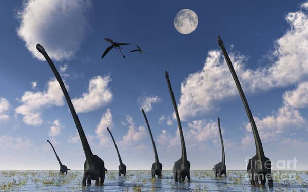 Marsh Bird Digital Art - A Herd Of Omeisaurus Dinosaurs by Mark Stevenson