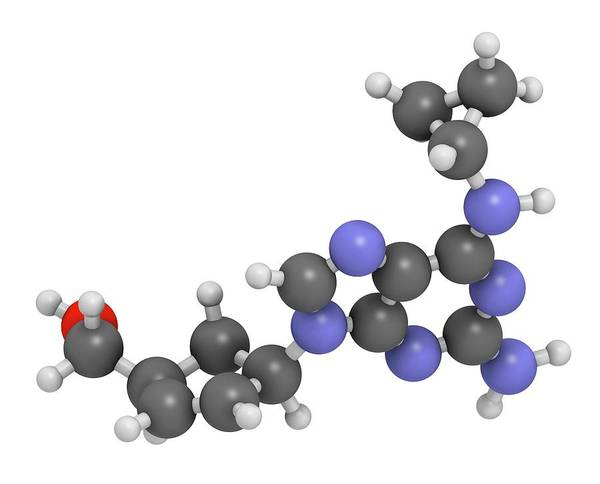 Reverse Wall Art - Photograph - Abacavir Hiv Drug Molecule by Molekuul