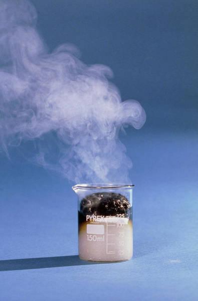 Wall Art - Photograph - Acid Dehydration Of Sugar by David Taylor/science Photo Library