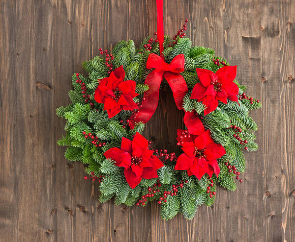 Photograph - Advent Wreath With Winter Rose by U Schade