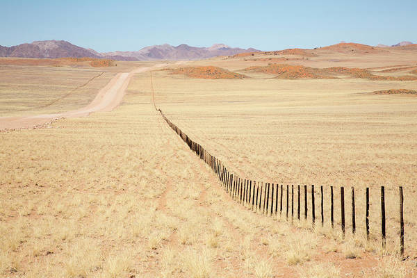 Wall Art - Photograph - Africa, Namibia, Namib Desert by Jaynes Gallery
