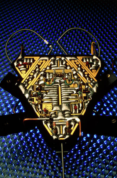 Land Mark Photograph - Analogue Robot Insect by Peter Menzel/science Photo Library