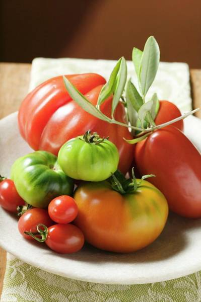 Wall Art - Photograph - Assorted Tomatoes With Olive Sprig On Plate by Foodcollection