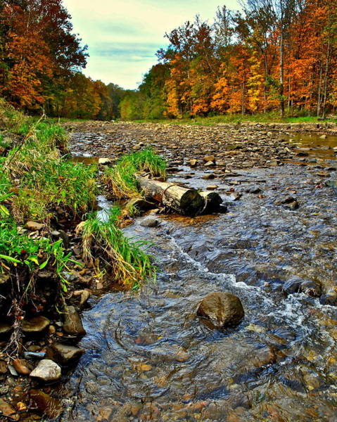 Birch River Photograph - Autumn Stream by Frozen in Time Fine Art Photography